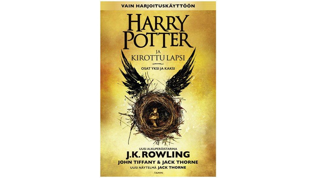 Harry Potter Kirottu Lapsi
