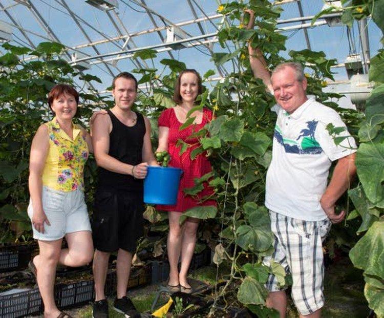 Torkkelin perhe: Tanja (vas.), Leo, Mila ja Vitali valmistaa hapankaalia Vitalin isän reseptillä. Hapankurkkujen raaka-aineen he kasvattavat itse kasvihuoneessa.