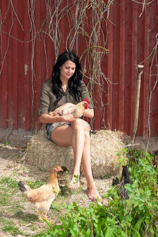 Vuodenvaihteessa Marika Kiviharjulle 9-viikkoisen tullut Jackson-kukko oppi kevättalvella kiekumaan.