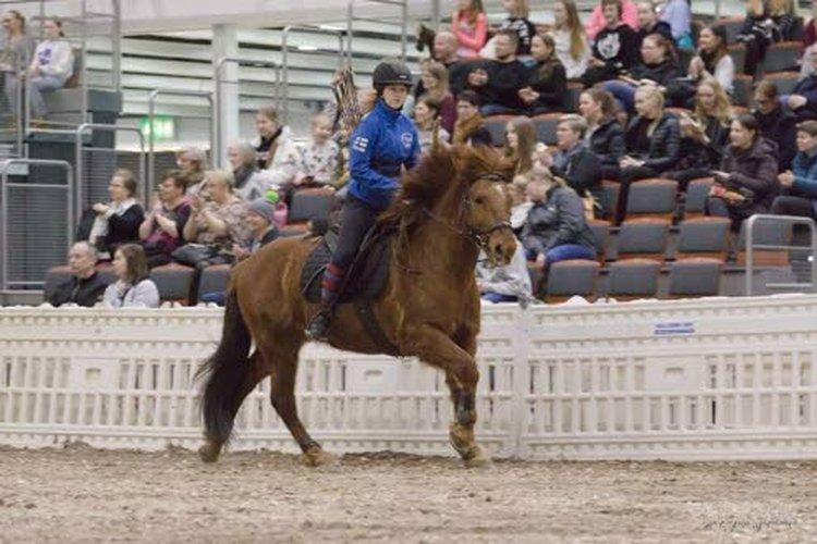 Susannan Helinä-tytär ratsastaa kuvassa Tommilla Go Expo Horse 2020 messuilla suomenratsujen esityksessä.