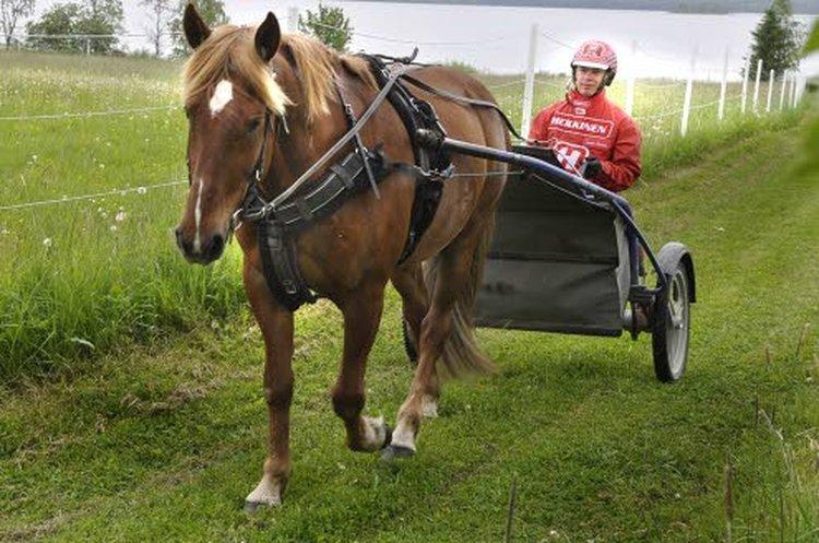 Santtu Raitalan ajopuvut harjoituksissa ja kisoissa ovat turkulaisen, kansainvälisesti tunnetun MIRAn valmistamat. MIRAn tehdas sijaitsee Turussa Metsämäen raviradan läheisyydessä.